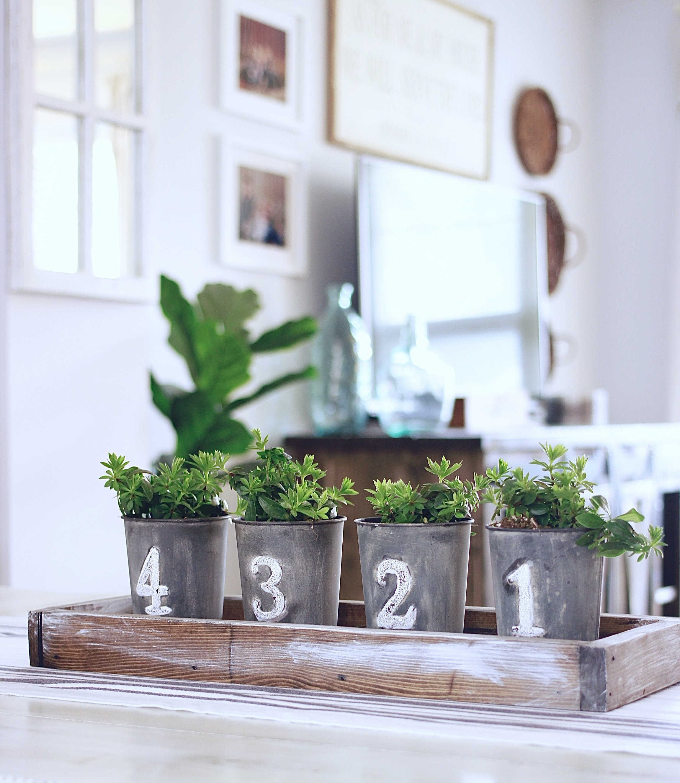 DIY Simple Spring Centrepiece for under 15 dollars and 10 minutes! www.whitepicketfarmhouse.com