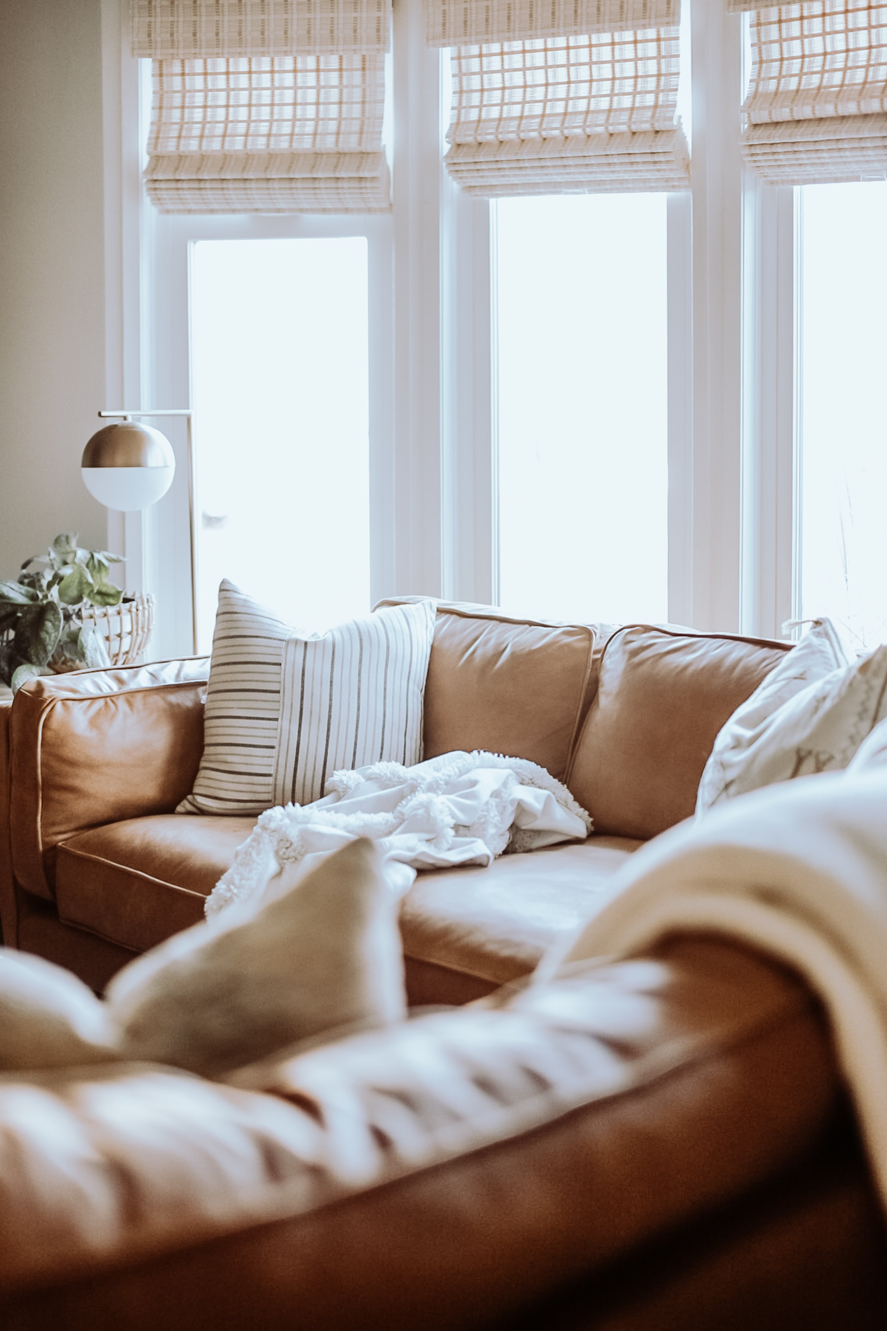 All You Need To Know About The Timber Sectional from Article. Comparing Structube and Article Sofas and leather types. What Makes Article Stand out.