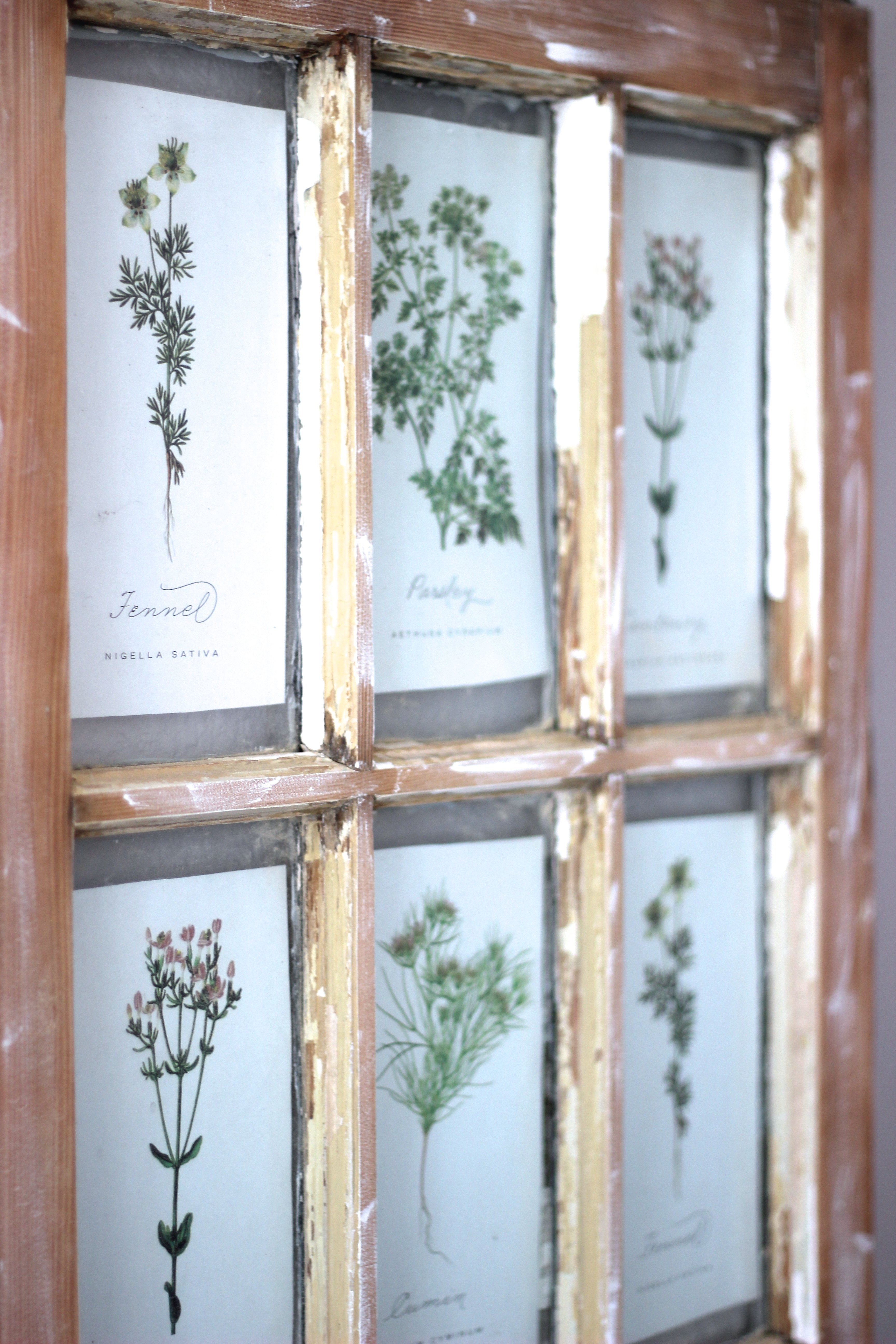 Salvaged Window And Free Printable's