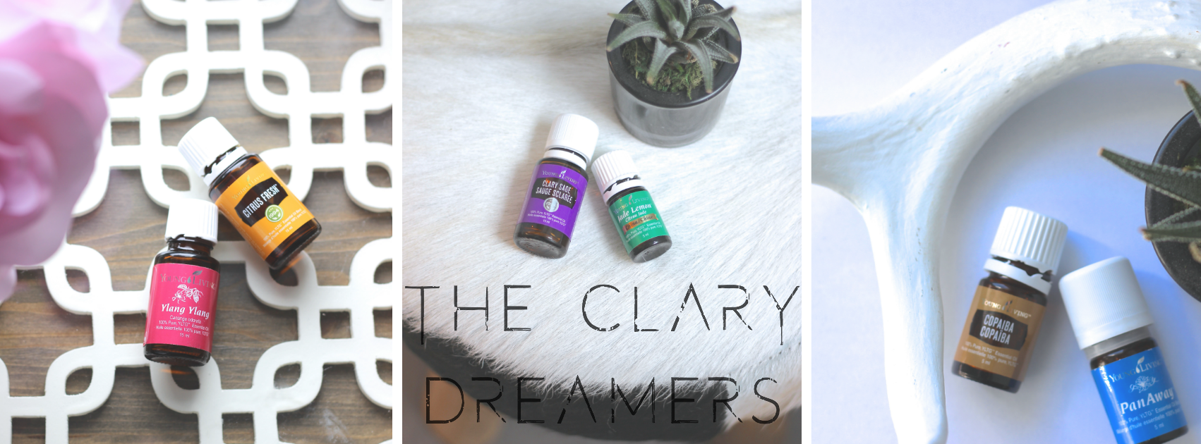 The Clary Dreamers, Young Living Essential Oil Team