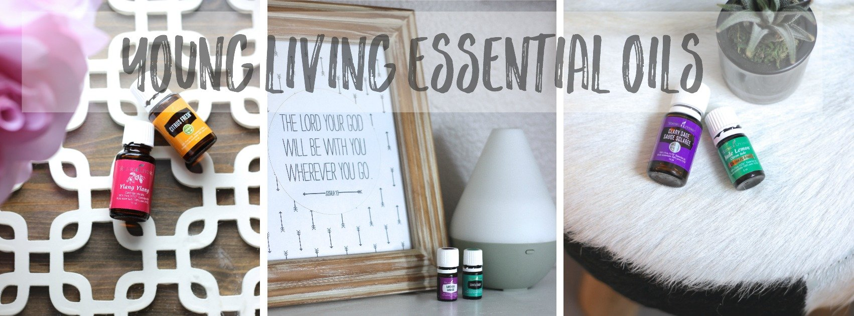 Young Living essential Oils, The best oils in the world. Find out how they saved our lives