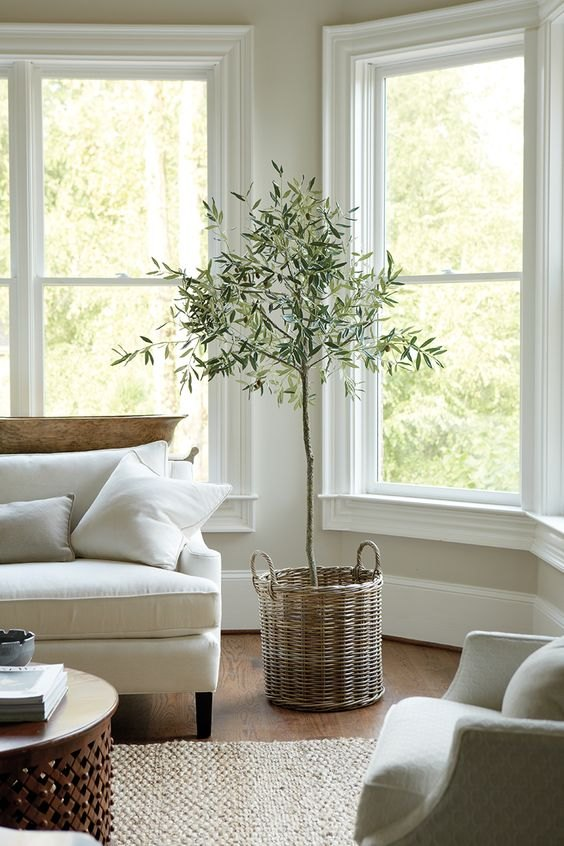 The Best Faux Plants and Where TO Buy Them, Fake Plants