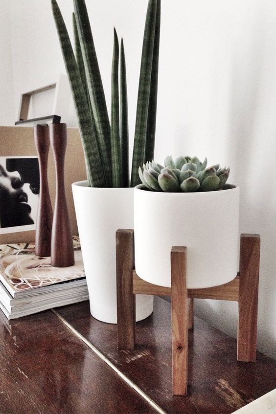 The Best Indoor Plants & Wire To Buy Them, The Best Faux Fake plants