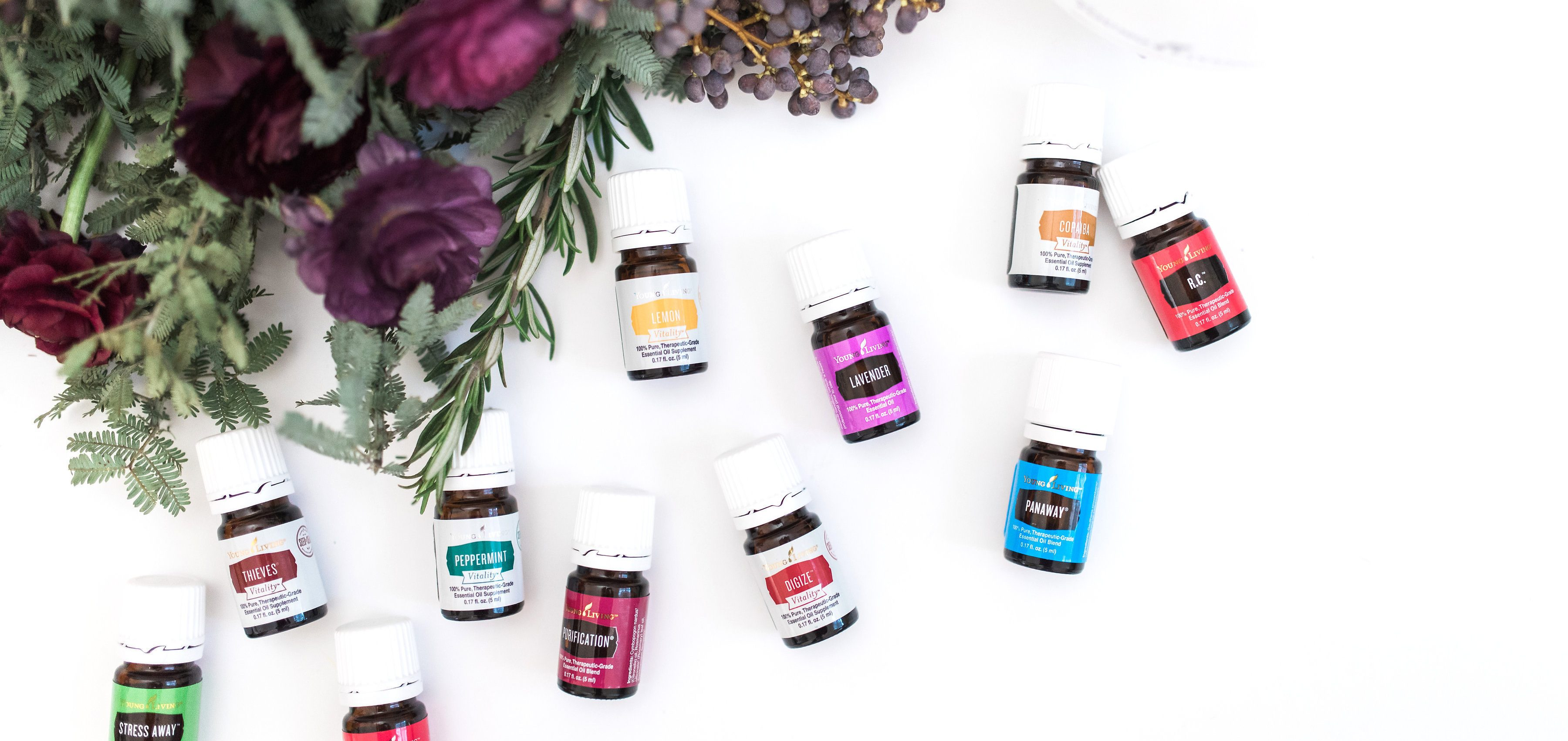 The Oily Life - Clary Dreamers - Young Living Essential Oils
