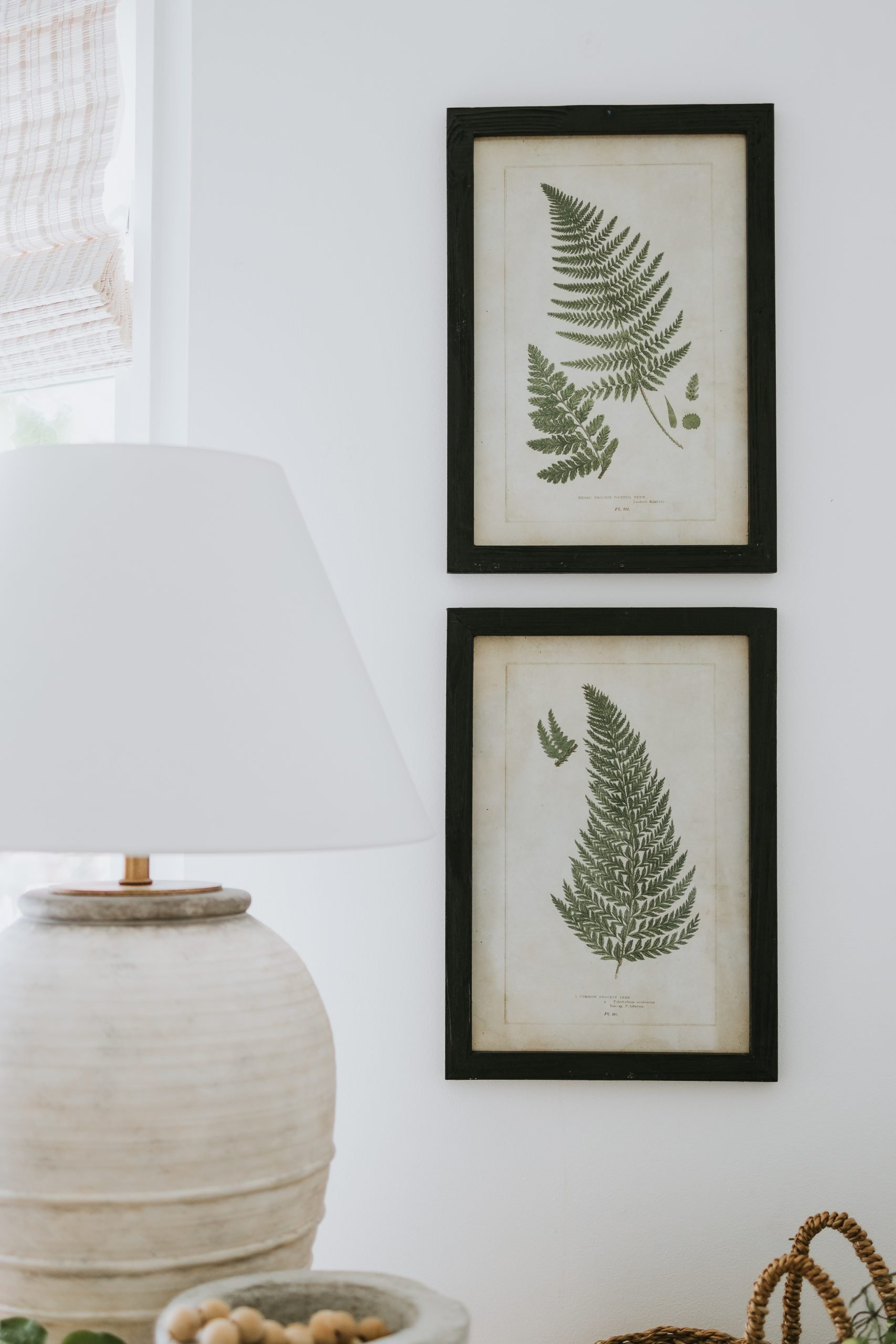 Vintage Botanical Prints in Recycled Black Frames. Instead of spending hundreds on new art, learn how to recycle your current frames and where to find beautiful botanical art! I spend 11 dollars in total on this modern botanical printables!
