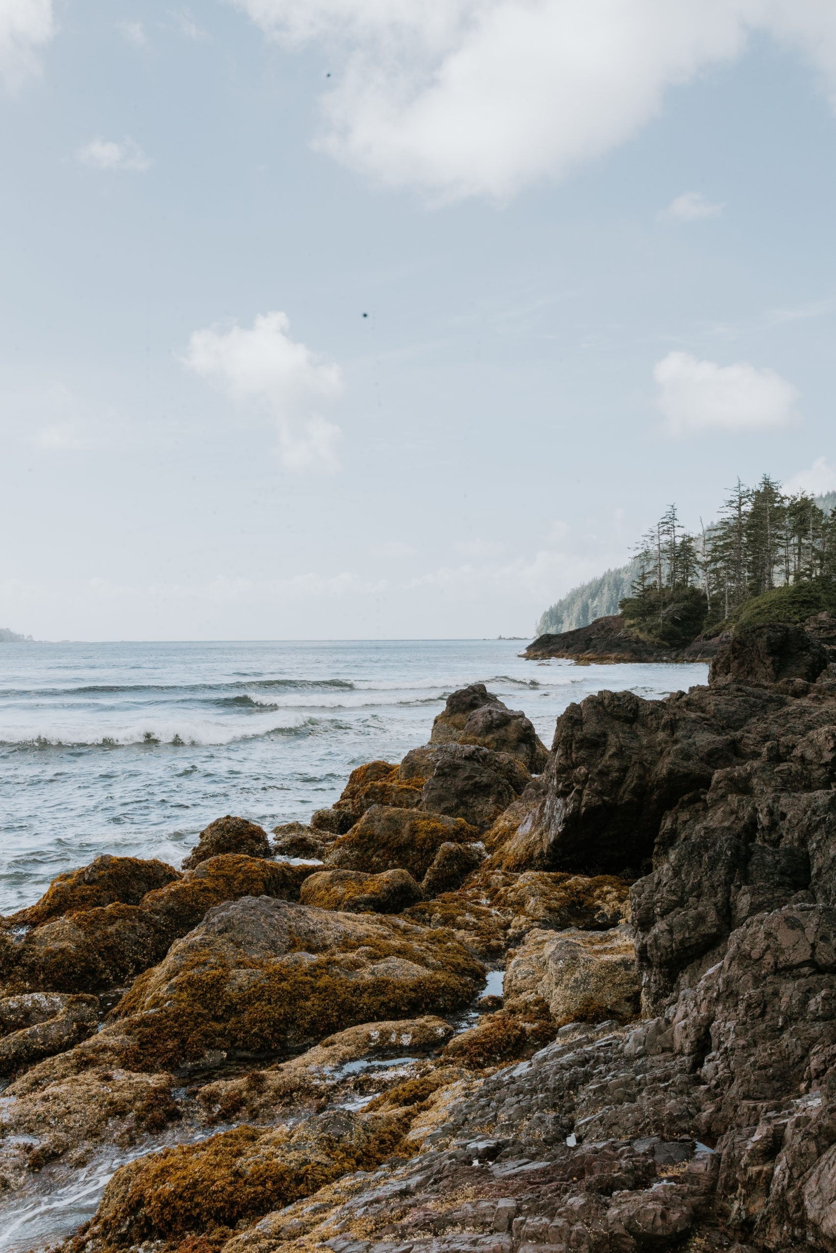 The Trek To San Josef Bay. All You Need To Know About Visiting San Josef Bay Near Cape Scott on Vancouer Island. It's A Must See!